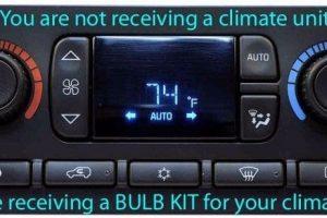 DIY Bulb Kits